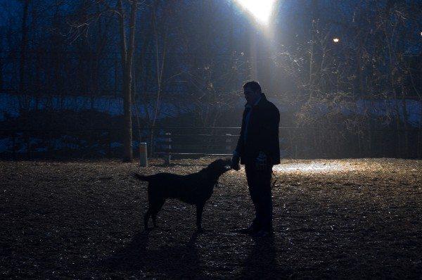 hond-uitlaten-avond